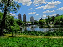 Central Park overlooking the water Royalty Free Stock Photo