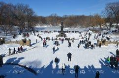 Central Park på Januari 24, 2016, NYC, USA Arkivfoto