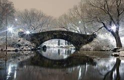Central Park på natten NYC Royaltyfri Fotografi