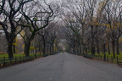 Central Park Path. The main path in Central park Stock Photography