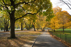 CENTRAL PARK PATH. A path in the background at Central Park Royalty Free Stock Photo