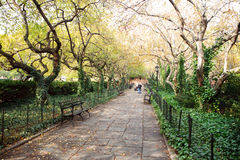 Central Park Path. In autumn Royalty Free Stock Image