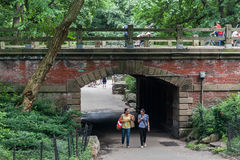 Central Park Path New York City Royalty Free Stock Photo