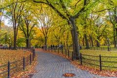 Central Park Path stock photos