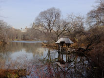 Central park, paths, elms, beginning of February. View to paths in Central Park, New York Stock Image