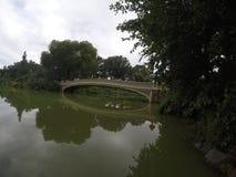 Central Park piękny most, NY Zdjęcia Stock