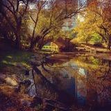 Central Park pond. New York, NY, USA. Central Park pond. New York, USA Stock Photography