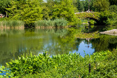 Central Park Pond Royalty Free Stock Photo
