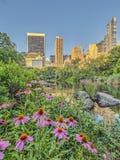 Central Park, primavera de New York City foto de archivo libre de regalías