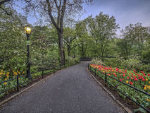 Central Park, primavera de New York City Imagen de archivo libre de regalías