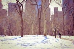 Central Park przy zima czasu specjalnymi momentami na pięknym sezonie Zdjęcia Royalty Free