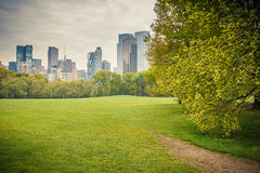 Central park at rainy day Royalty Free Stock Image