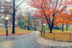 NY Central park at rainy day. Central park at rainy day, New York City, USA Royalty Free Stock Photography