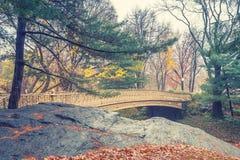 NY Central park at rainy day Stock Photography