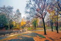 NY Central park at rainy morning Royalty Free Stock Image