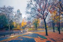 NY Central park at rainy morning. Central park at rainy morning, New York City, USA Stock Images