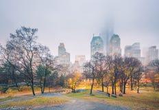 NY Central park at rainy morning Royalty Free Stock Images