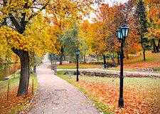 Central park in Riga in autumn, Latvia Royalty Free Stock Photography