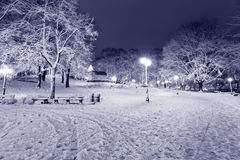 Central Park in Riga, Lettland nachts Winter lizenzfreie stockfotografie