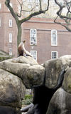 Central Park Seal Royalty Free Stock Images
