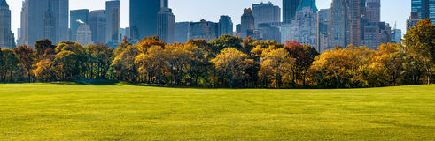 Central Park Sheep Meadow with Fall Foliage, Manhattan, New York Stock Photo