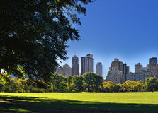 Central Park. Stock Images