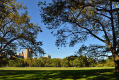 Central Park. Sheep Meadow in the Central Park, Manhattan, at sunny day Royalty Free Stock Images