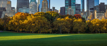 Central Park Sheep Meadow and skyscrapers in fall. New York. Panoramic view of Central Park Sheep Meadow in morning light with full Autumn colors. Midtown Royalty Free Stock Photography
