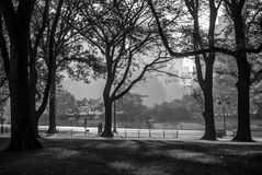 Central Park Silhouette Royalty Free Stock Photo