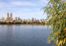 Central Park skyline Royalty Free Stock Image