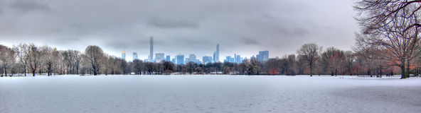 Central Park in sneeuw, de Stad van Manhattan, New York Royalty-vrije Stock Afbeelding