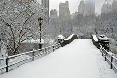 Central Park in sneeuwonweer stock afbeeldingen