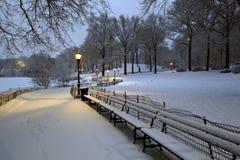 Central Park in sneeuwonweer royalty-vrije stock afbeeldingen