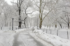 Central Park in the snow, Manhattan New York Royalty Free Stock Photo