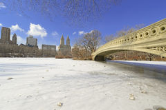 Central Park in the snow, New York Stock Photography