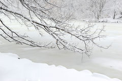 Central Park in the snow after snowstorm, New York City Royalty Free Stock Photo