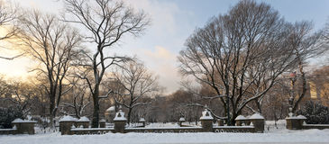 Central Park after snow storm. Central Park in New York City after large snow storm Stock Photo