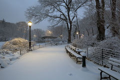 Central Park in snow storm Stock Images