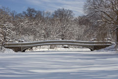 Central Park after snow storm Stock Image