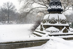 Central Park after snow storm Royalty Free Stock Image
