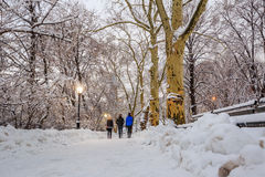 Central Park after the Snow Strom Linus Royalty Free Stock Image