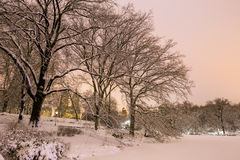 Central Park after the Snow Strom Linus Stock Photo