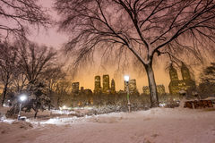 Central Park after the Snow Strom Linus Stock Photos