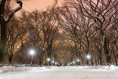 Central Park after the Snow Strom Linus Royalty Free Stock Photo