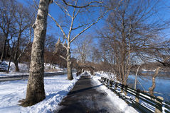Central Park Snowy Path. Path within Central Park, NYC with Snow Stock Image