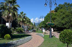 Central park in Sochi with people Royalty Free Stock Photos