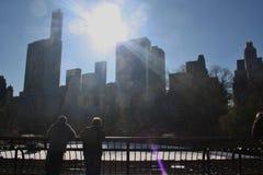 Central Park som åker skridskor NYC Arkivbild