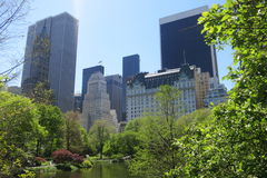 Central Park South Stock Photography