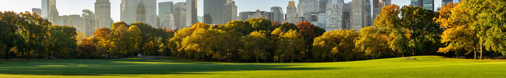 Central Park South from Sheep Meadow in early morning sunlight. New York City Stock Photo