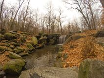 Central Park spadek Obrazy Royalty Free